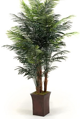 Palm Tree in Square Planter | Tuggl