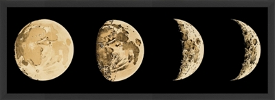 Phases of the Moon Wall Decor