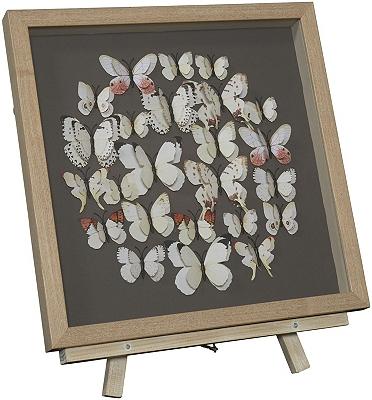 Foley Framed Art